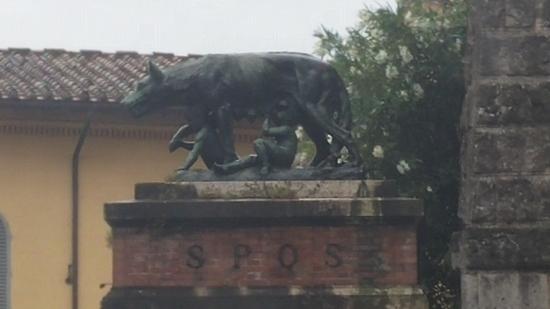 Siena 14 Sienese Wolf