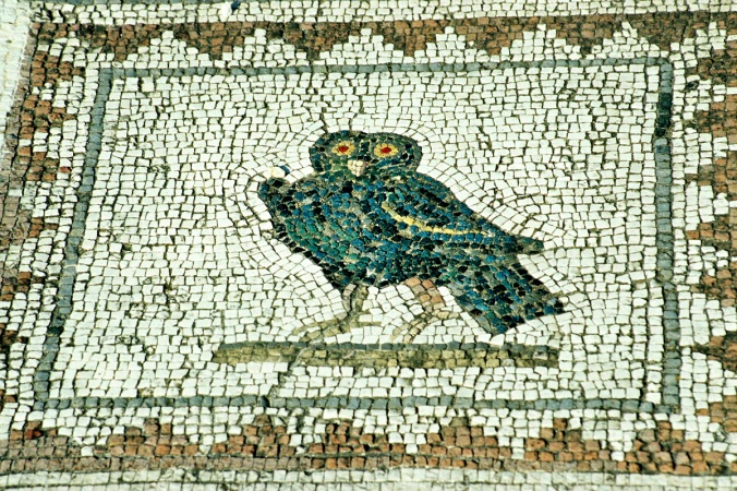 Image result for ancient greek birds
