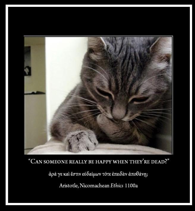 Cat Philosopher